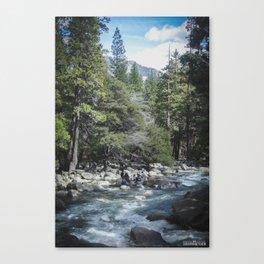 Waterfall @ Yosemite National Park, CA Canvas Print