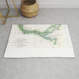 Vintage Map of The Savannah River (1854) Rug