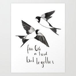 Valentines swallows Art Print