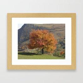 Transylvanian Autumn Framed Art Print