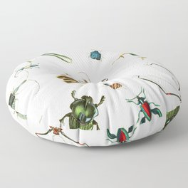 Bug Life - Beetles - Bugs - Insects - Colorful - Insect Pattern Floor Pillow