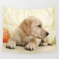 puppy Wall Tapestries featuring Labrador puppy by Elisabeth Coelfen
