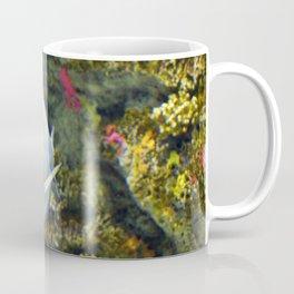 Pompano Coffee Mug