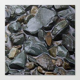 rocks in the rain Canvas Print