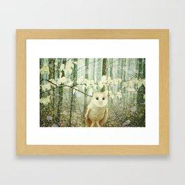 Barn Owl in Snowy Winter Woodland Framed Art Print