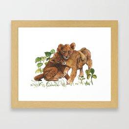 lionceaux Framed Art Print