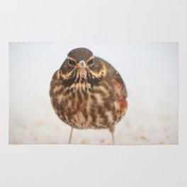 Chilly Bird Rug