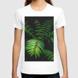Illuminated Fern Leaf In A Dark Forest Background T-shirt