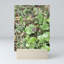 I Spy #2 Mini Art Print