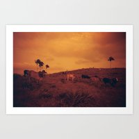 cows Art Prints featuring Cows by Melissa Ford