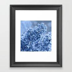 Lilac blue 281 Framed Art Print
