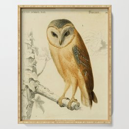 Naturalist Barn Owl Serving Tray