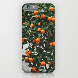 Orange tree in Tel Aviv Israel | Fine Art Photography iPhone Case
