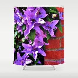 Beautiful purple flowerbush on the wall Shower Curtain