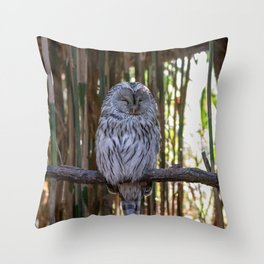 Ural owl resting on a branch Throw Pillow