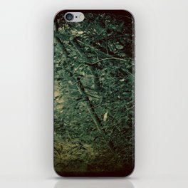 Into the Enchanted Forest iPhone Skin