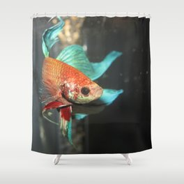Fabiomassimo Shower Curtain