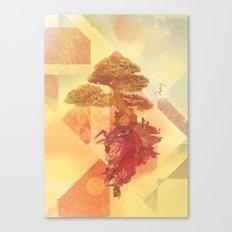 Bocuma 01 Canvas Print