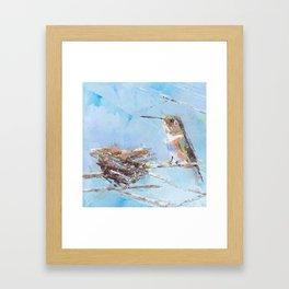 Hummingbird and Nest Framed Art Print