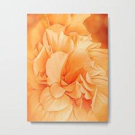 Hibiscus Rosa Double Petaled Yellow Metal Print