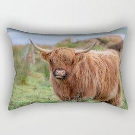 Long haired Highland cattle - Highland cow, Highlander, Heilan coo - Thurso, The Highlands, Scotland Rectangular Pillow
