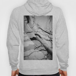 Tree Division in Mono Hoody