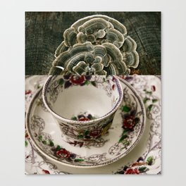 Fungal Tea Canvas Print