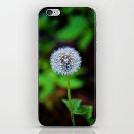 Dandelion Clock iPhone Skin