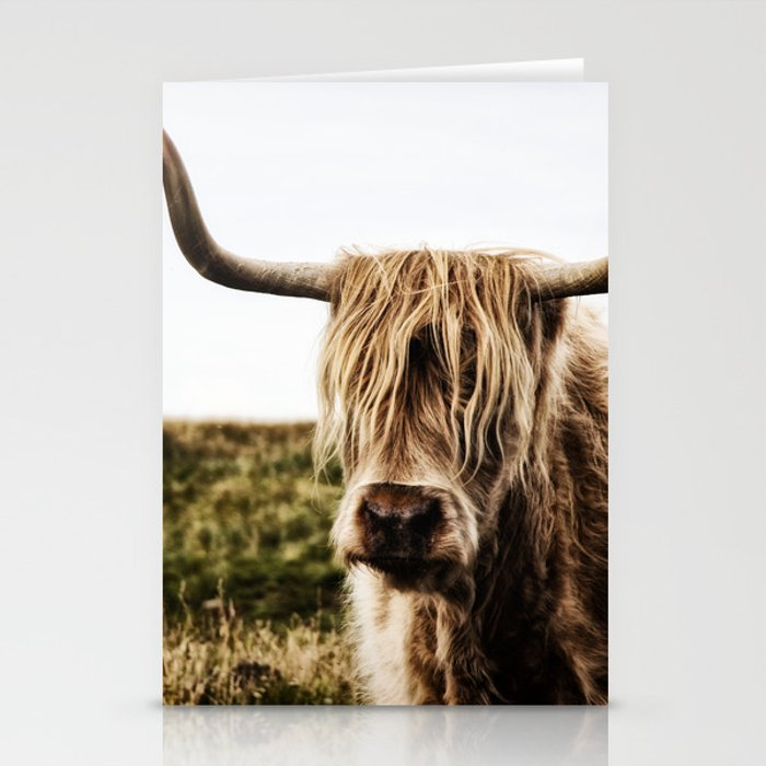 Highland Cow - color Stationery Cards