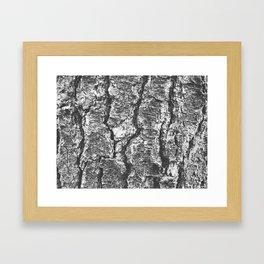 Autumn 6 Framed Art Print
