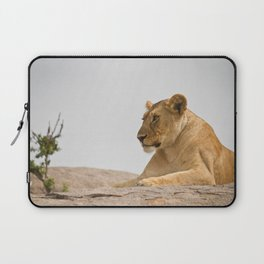 Lioness on a Rock Laptop Sleeve
