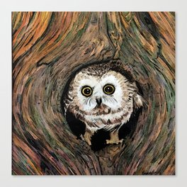 Baby Owl in Color Canvas Print