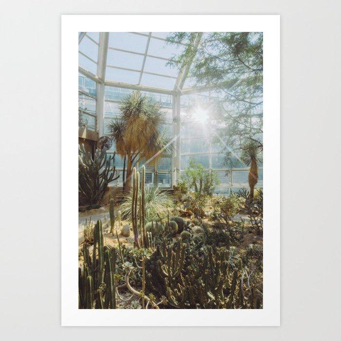 Conservatory Kunstdrucke