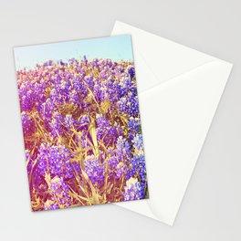 Bluebonnets! Stationery Cards