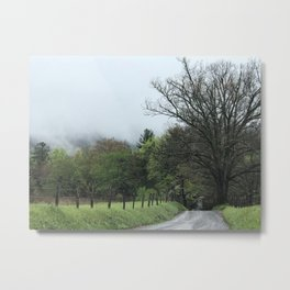 Cove Path Metal Print
