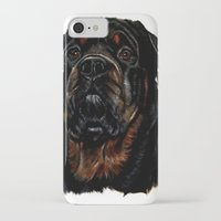 rottweiler iPhone & iPod Cases featuring Male Rottweiler by taiche