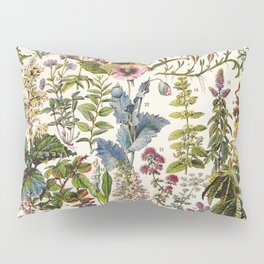 Adolphe Millot - Plantes Medicinales A - French vintage poster Pillow Sham