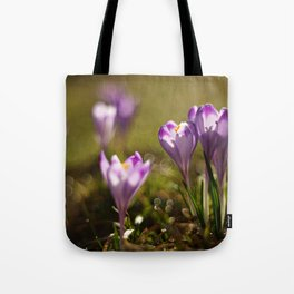 Blooming fields of morning dew Tote Bag