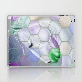 Rainbow Lusitano Mosaic Tiled Art Laptop & iPad Skin