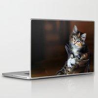 kitten Laptop & iPad Skins featuring Kitten by Julie Hoddinott