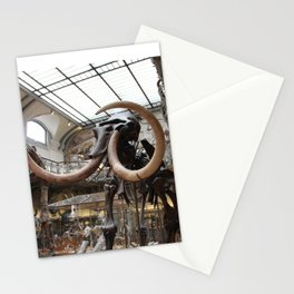 Curiosity #3 Tusks Stationery Cards