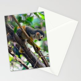 Squirrel monkey in a branch Stationery Cards
