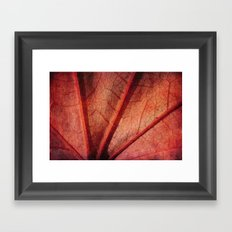 leaf abstract Framed Art Print