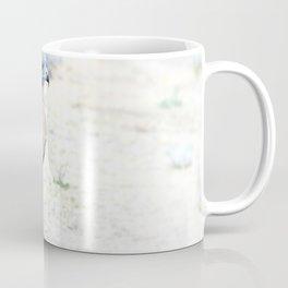 Hungry Red Teiled Hawk Coffee Mug