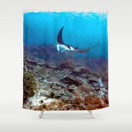 Petite manta ray Shower Curtain