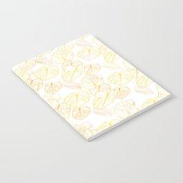 Monstera (White Glow) - Sunset Notebook