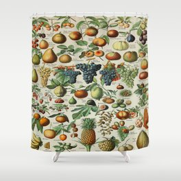 Fruits Vintage Scientific Illustration French Language Encyclopedia Lithographs Educational Shower Curtain