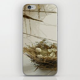 There are no birds in last year's nest iPhone Skin