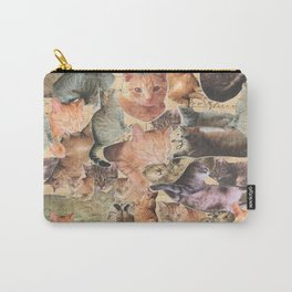 Raining Cats  Carry-All Pouch