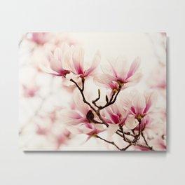 Japanese Magnolia I Metal Print